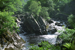 The Falls of Leny, near Callander.