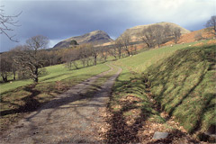 Dumgoyne and Dumfoyn, from Campsie Dene Road.